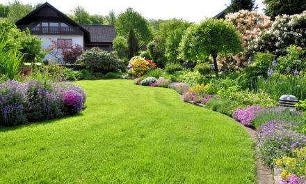 Apprendre à jardiner en ligne