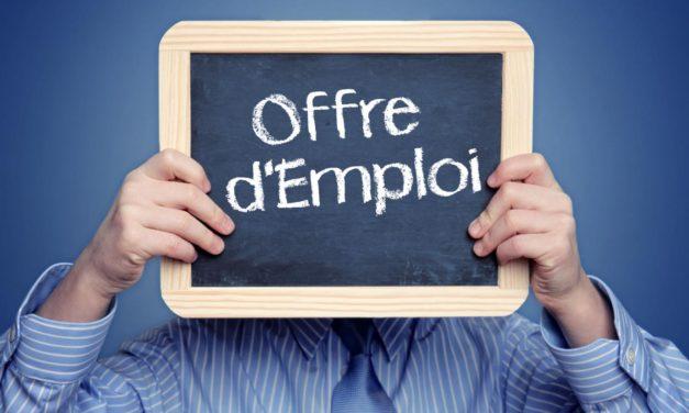 Petites annonces emploi : ou les trouver ?